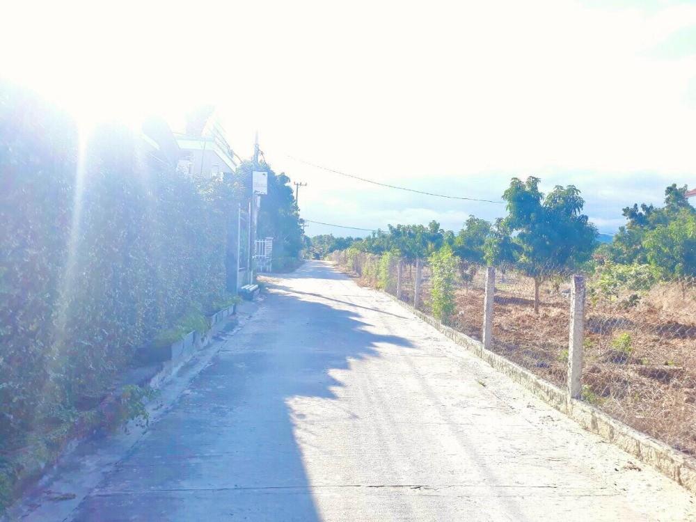 Bán đất giá chỉ 4.9tr/m2,full thổ cư,gần QL1A Cam Hải Tây Cam Lâm Khánh Hòa.