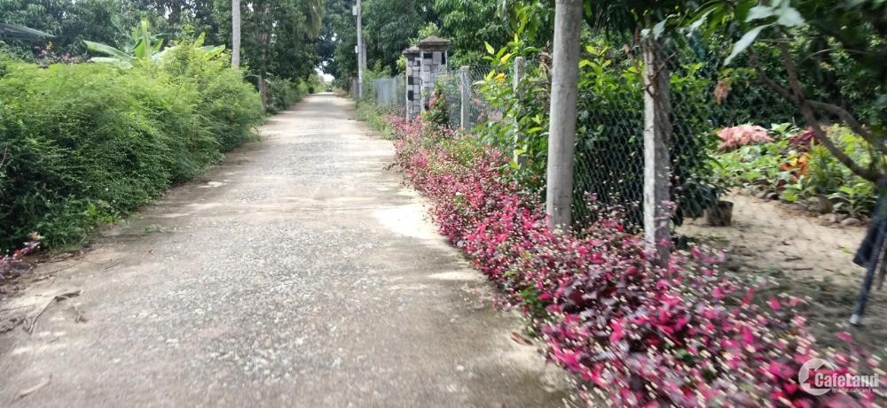 Bán Đất Sào Ba Mặt Tiền Gía Siêu Rẻ Cam Thành Bắc Bãi Dài Cam Lâm. LH.0973078745
