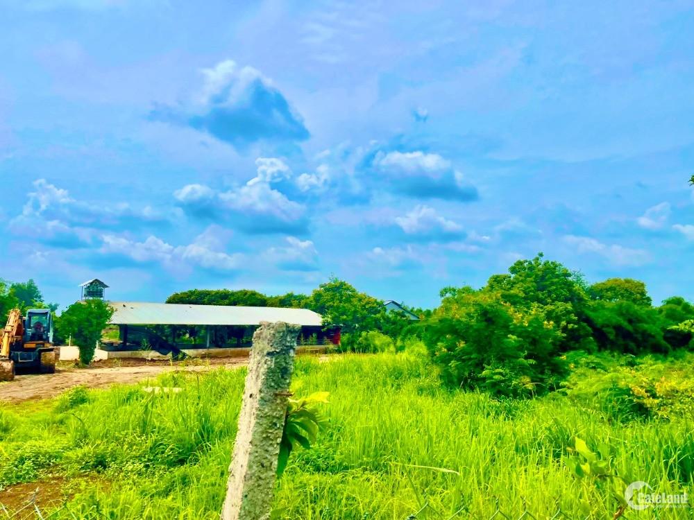 Bán đất giá rẻ nhất khu vực Cẩm Mỹ, Đồng Nai có 800m2 mặt tiền, 600m thổ cư