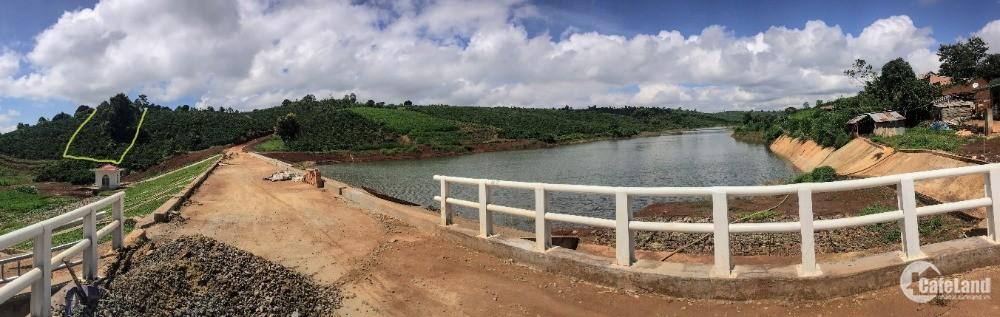 Bán 7300m2 đất tại thôn Đồng Lạc 4, xã Đinh Lạc huyện Di Linh, Lâm Đồng