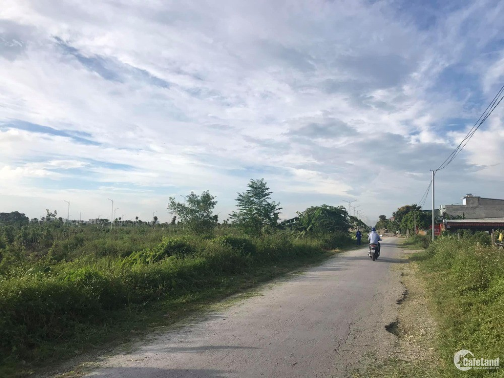 Bán đất mặt đường Lương Như Học, TP HD, 100m2, mt 5m, chuẩn bị làm đường, đầu tư