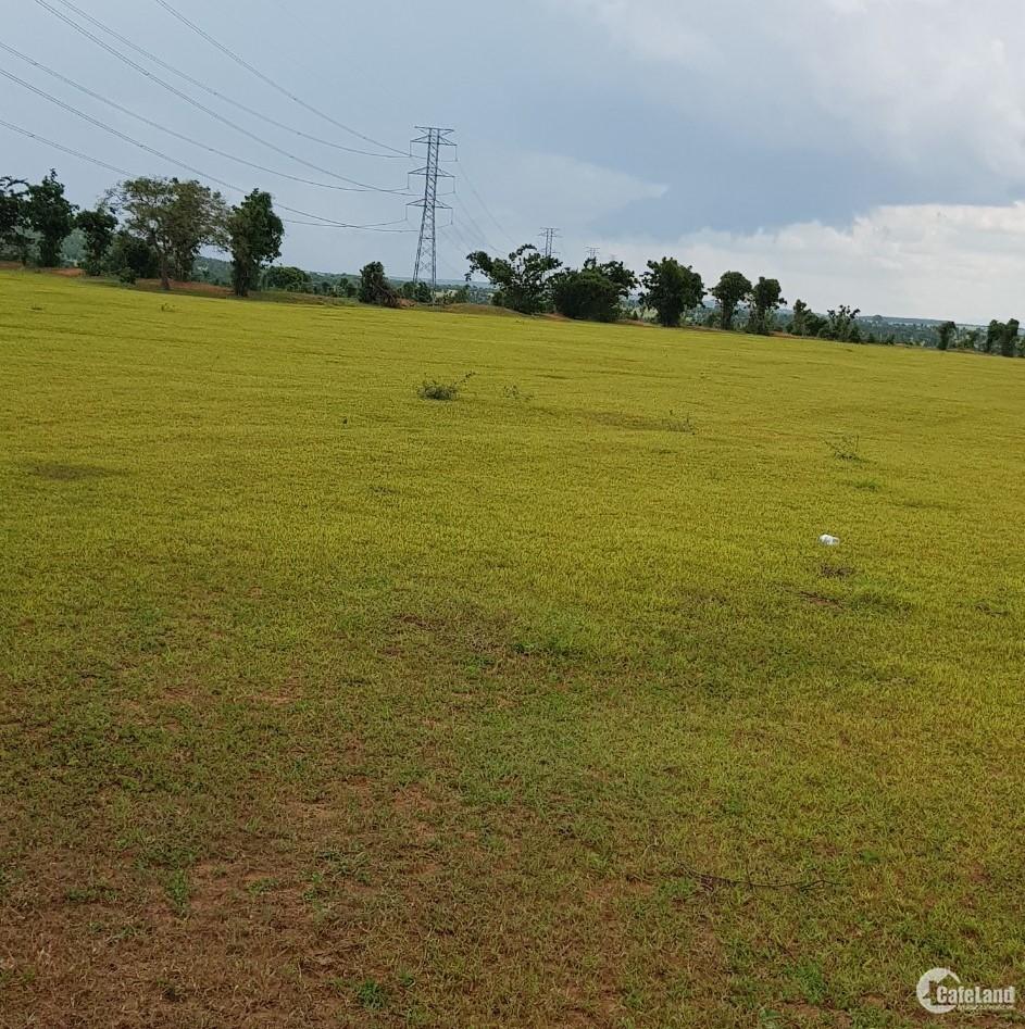 3 ngày cuối ưu đãi khi mua đất vười bình tân chỉ 1,19 tỷ/13,748m2 Lh 0385230667