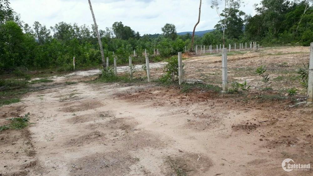 Còn 2 lô đất cạnh khu công nghiệp Bàu Bàng  đất sổ sẵn công chứng ngay ..