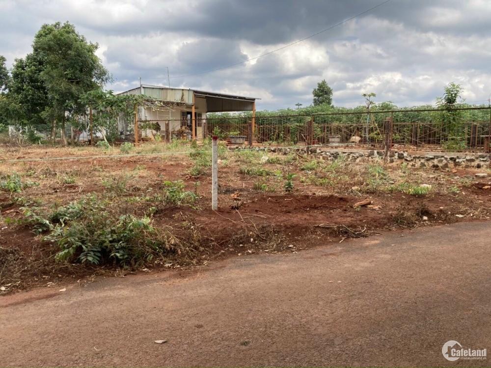 Bán đất sào có thổ cư đẹp nhất xã Phước Bình huyện Long Thành chỉ 2,5 triệu/m2