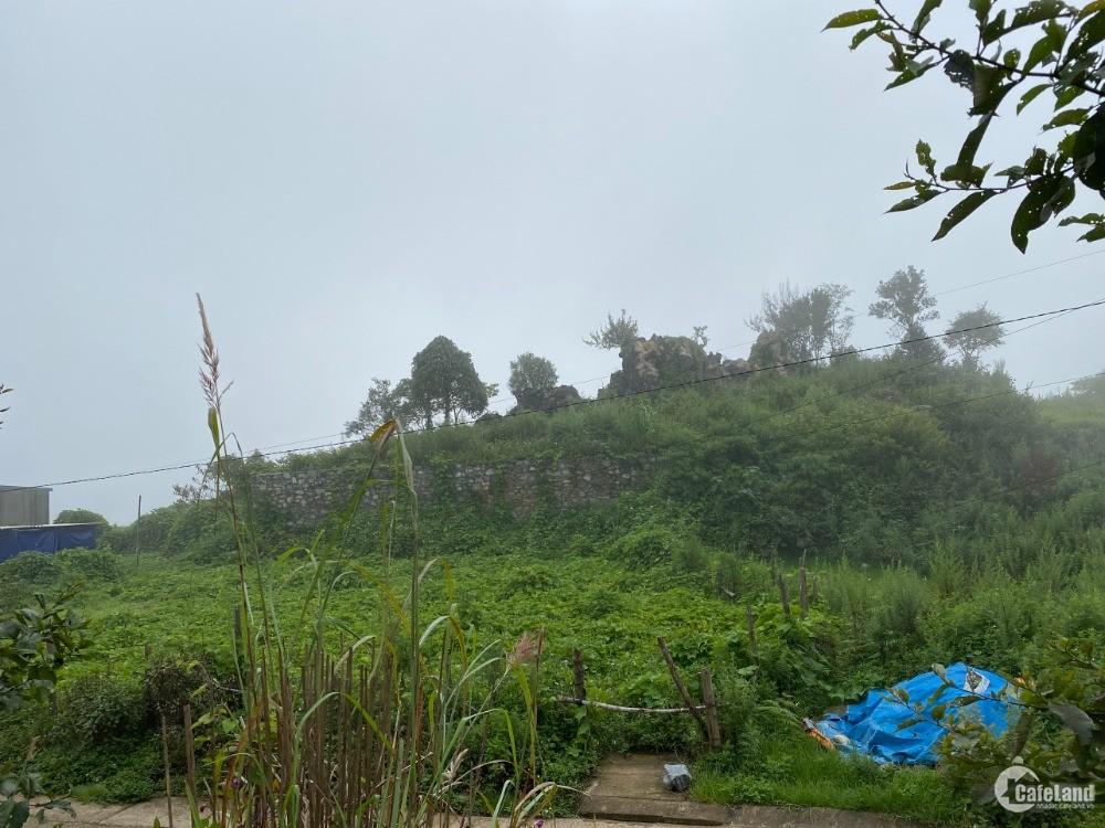 Bán mảnh đất Sapa vị trí đẹp thích hợp đầu tư giá cắt lỗ