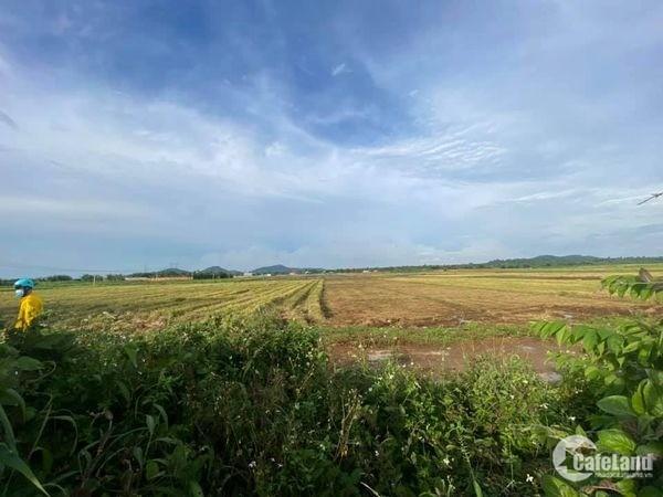 3,6 xào đất View Cánh Đồng ở khối 15, Khánh Xuân, BMT