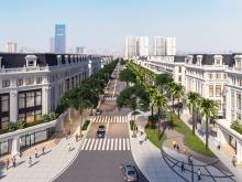 Phân phối độc quyền BIỆT THỰ dự án Louis City Hoàng Mai