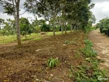 bán đất ngay đường tránh Lộc Nga Bảo Lộc