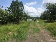 Kẹt vốn làm ăn nên bán lô đất vườn 2000m2 giá 400tr/sao ở Đồng Nai.