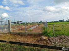 Lô đất làm vườn đường 572 củ chi tặng vườn mít thái giá 850tr