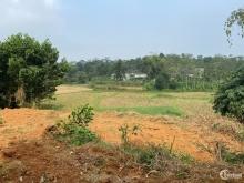 Cần bán gấp lô đất 2797,8m2 tại Ba Trại, Ba Vì, Hà Nội.LH Thu Hương:0975349726