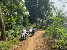 Bán gấp lô đất 1800m2 tại Ba Trại, Ba Vì, Hà Nội. LH Thu Hương:0975349726
