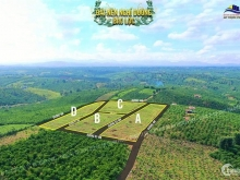 Đất Thổ Cư Lâm Đồng - View Đồi Chè , Càphê xanh ngát Tiện Xây Homestay