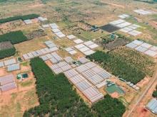 Đất vườn trồng thanh long, điện nước đầy đủ 4000m2 giá chỉ 300tr