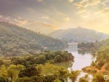 Sakana Biệt thự Nghỉ dưỡng 5 sao ven đô  Lợi nhuận tới 12%/ năm Tại Hồ Dụ - Thàn