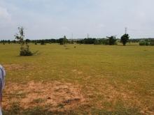 Bán 1,3ha đất nông nghiệp hồng thái 95k/m2 cách đường liên xã 150m Lh 0385230667