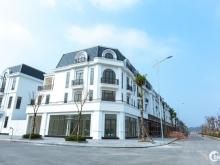 Phương án đầu tư mới tại dự án Crown villas