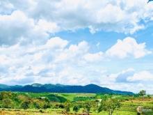 Kẹt tiền mùa dịch cần bán gấp đất nền đồi chè Tâm Châu