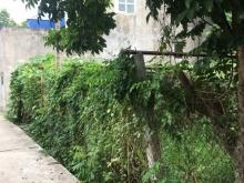 Bán đất Linh Quy, Kim Sơn, Gia Lâm, lô góc, 50m2, chỉ 600triệu