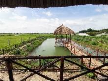 Chính chủ cần bán gấp đất thổ vườn Đa Phước Bình Chánh, sổ hồng riêng 4tr/m2