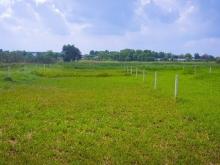 Bán đất vườn ở Tân Thạnh Đông. DT: 580m2 (Giá: 1,25 tỷ ). Đường 4m - LH : 093115