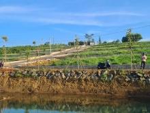 Bán đất Bảo Lộc Đất view hồ cực đẹp sổ sẵn