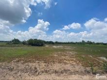 Bán đất Phước Khánh - Nhơn Trạch 770 triệu / công