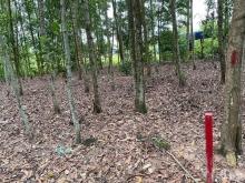 Bán 500m2 đất Long Tân - Nhơn Trạch gần swan part và Lý Thái Tổ