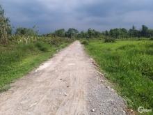 Chính chủ bán đất vườn 500m2 cạnh phim trường đường Long Thuận, P. Long Phước,Q9