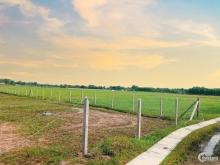Đất Củ 500m chỉ 1,7 triệu/m2 với sổ hồng riêng gần Tỉnh Lộ 7 An Nhơn Tây Củ Chi