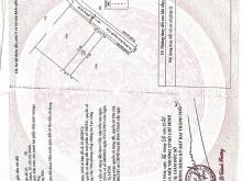 Bán đất mặt tiền đường Đoàn Nguyễn Tuấn, xã Quy Đức, Bình Chánh,17 triệu/m2