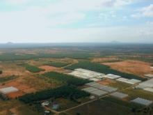 Đất Bình Thuận 65.000đ/m2 Gần QL 1A cho nhà đầu tư dài hạn đón hạ tầg