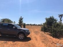 Vài lô đất nông nghiệp bình thuận gần đường liên huyện liên xã Lh 0938677909
