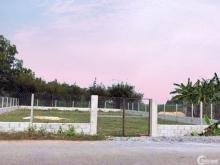 Chính chủ bán 673 m2 đất sổ hồng riêng nở hậu