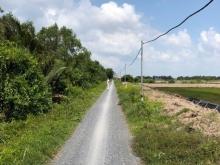 Bán đất đường xe hơi Lý Nhơn, Cần Giờ