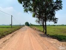 đất Củ Chi làm nhà vườn giá rẻ F0 500m2 mặt tiền đường 12m lộ giớ.