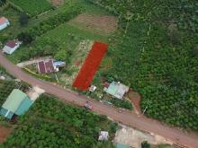 Đất 10x50m, mặt tiền Tản Đà, Xã Dambri, Bảo Lộc