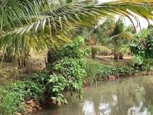 B145 - Bán vườn trái cây hơn 100m suối, gần 300m mặt tiền, 100% quy hoạch đất ở