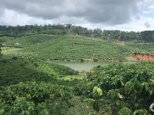 Mua bán đất Huyện Di Linh, Lâm Đồng, bán đất thổ cư,  đất vườn ,chính chủ