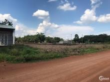 05 lô 280m(5.6x50m) đất liền kề ngay gần KCN Becamex Đồng Phú