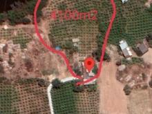 Đất nền Nông nghiệp Bình Thuận giá 1triệu2/m2 sinh lợi cao