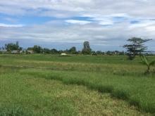 4 lô LK bao đẹp, đường 4m View cánh đồng , chỉ cần hơn 400tr đã sỡ hữu được ngay