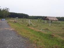 Bán lô đất khu nhà vườn nghỉ dưỡng An nhơn tây 860tr bao thuế shr