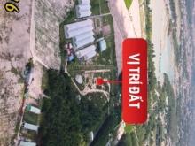 Đất nền Phường Mỹ Xuân Phú Mỹ BRVT 15 triệu/m2 sổ riêng công chứng liền.