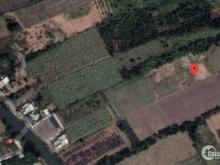 Đất vườn Nhơn Trạch, xã Phước Khánh, bán nhanh 900tr/1000m2