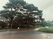Cần tiền trước tết bán nhanh nền đất ngã 3 đường lộ lớn TP Bảo Lộc, từ 3.2 triệu