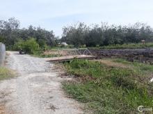 Đất Vườn An Tây Bến Cát Cặp Rạch Thông Sông Sài Gòn, Đường 6m, D/T:42x35=1.360m2