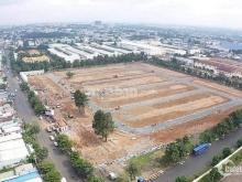 Đất dự án trung tâm đô thị phía đông tỉnh Bình Phước