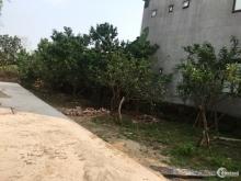 Mừng năm mới bán 50m2 đất Linh Quy Bắc, Gia Lâm, Hà Nội, chỉ 800 triệu.