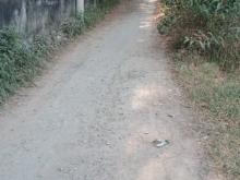 Đất thổ cư DT 1000m2 gần KCN Tân Quy giá 8 tỷ